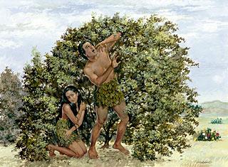 Fig Leaf High Res Illustrations - Getty Images